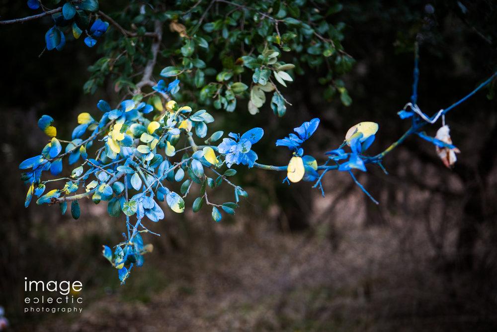 Painted Tree leaves.