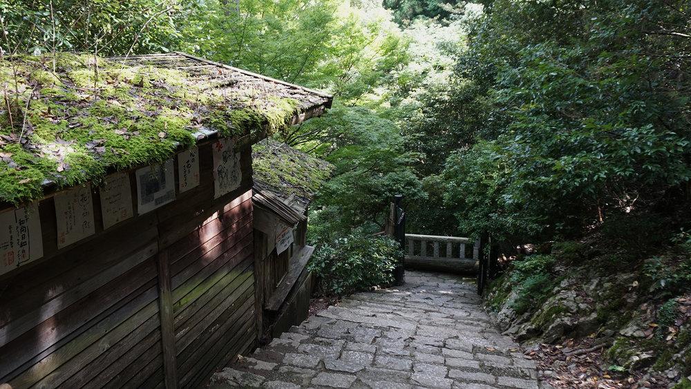 Japan18.jpg