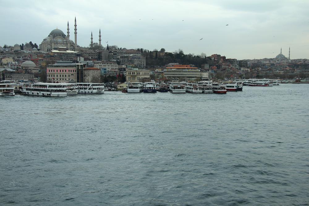 Turkey12.png