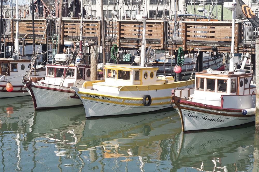 Dock on The Embarcadero