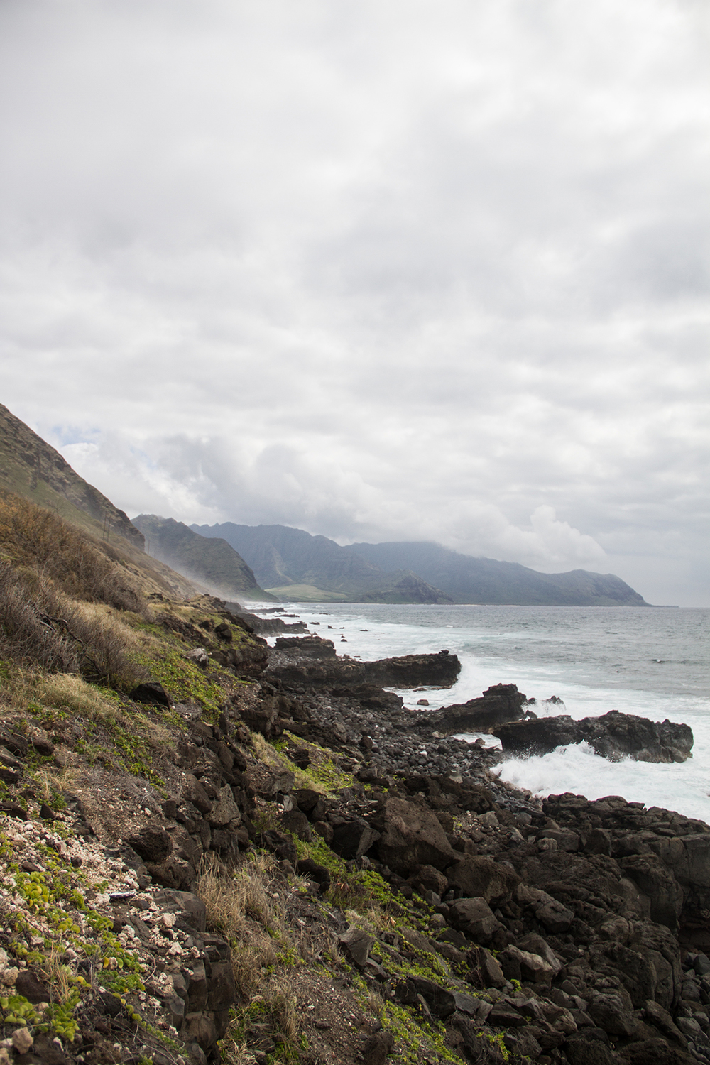 Along the Kaena Point Trail, on the northwestern tip of Oahu.