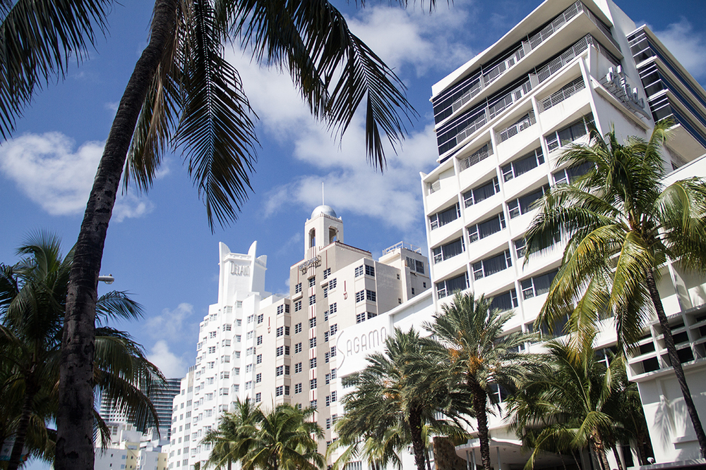 Wander List: Miami | Travel Guide | desertfroth.com