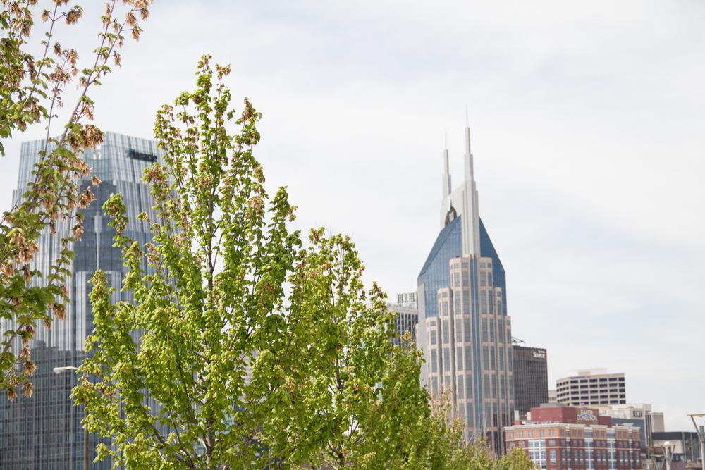 Wander List: Nashville | Desert Froth
