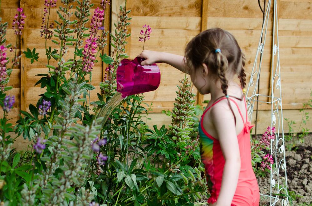 Watering_garden