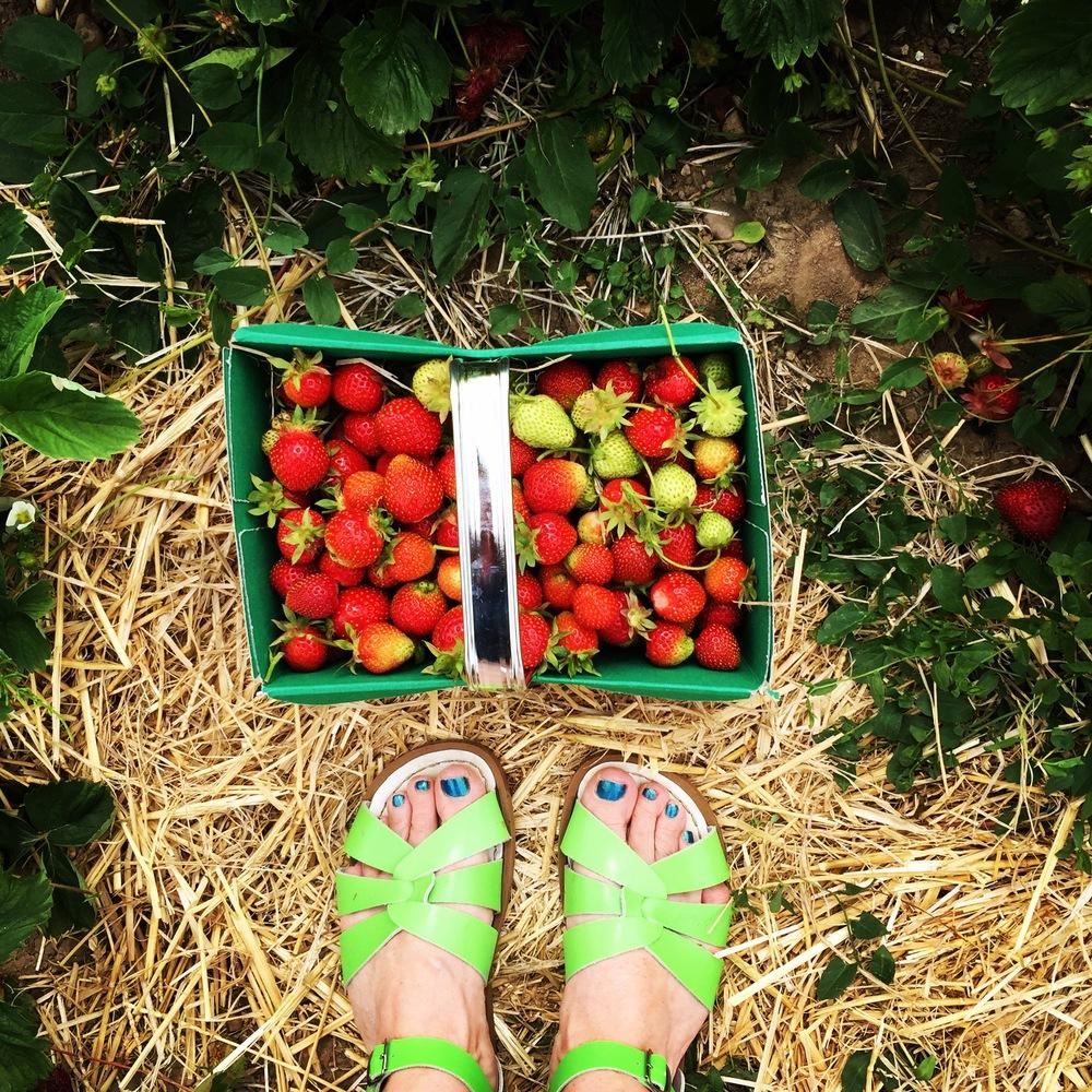 Starwberry_feet
