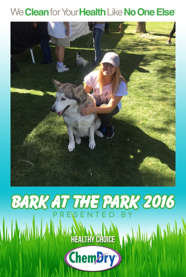 Bark_at_the_Park_2016_-_Part_2_-_20161002_-_01_36_47.jpg