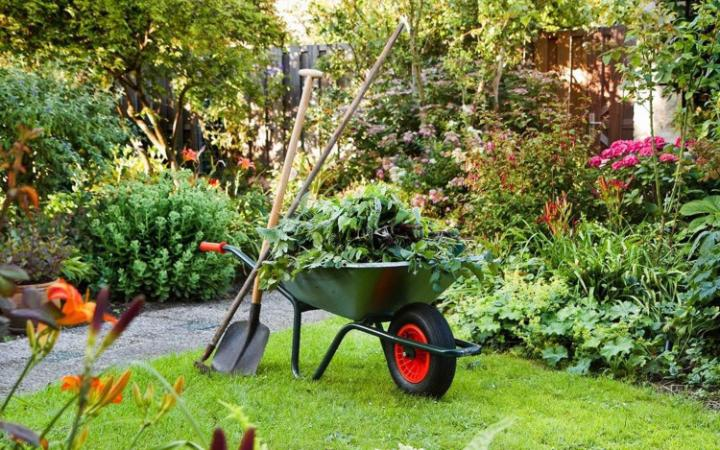Gardening is key to improving mental health     CREDIT: WORLD MENTAL HEALTH