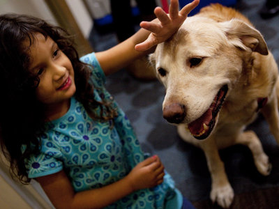Thelma Balmaceda, age, 4, pets Viola, the resident canine at the Children's Inn on the campus of the National Institutes of Health in Bethesda, Md. Families stay at the inn when their children are undergoing experimental therapies at NIH.   Melissa Forsyth/NPR