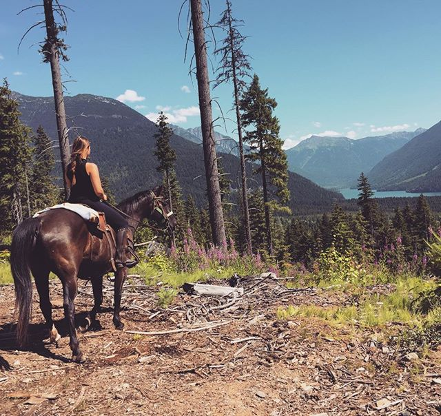 Today I went for a horseback ride in Paradise (aka Pemberton) and saw a mama bear and her cubs. Life's good.