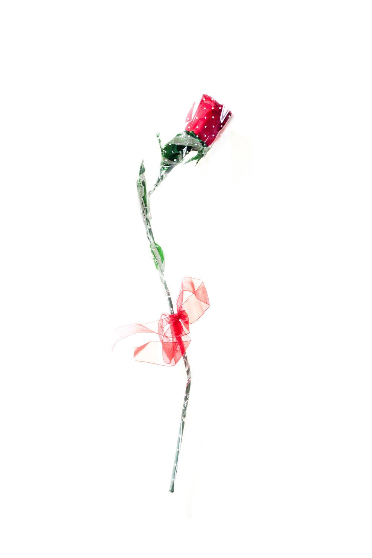 Phony Rose
