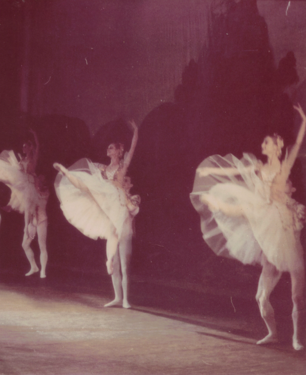 "Fragment from ""Swan Lake"" Act I."