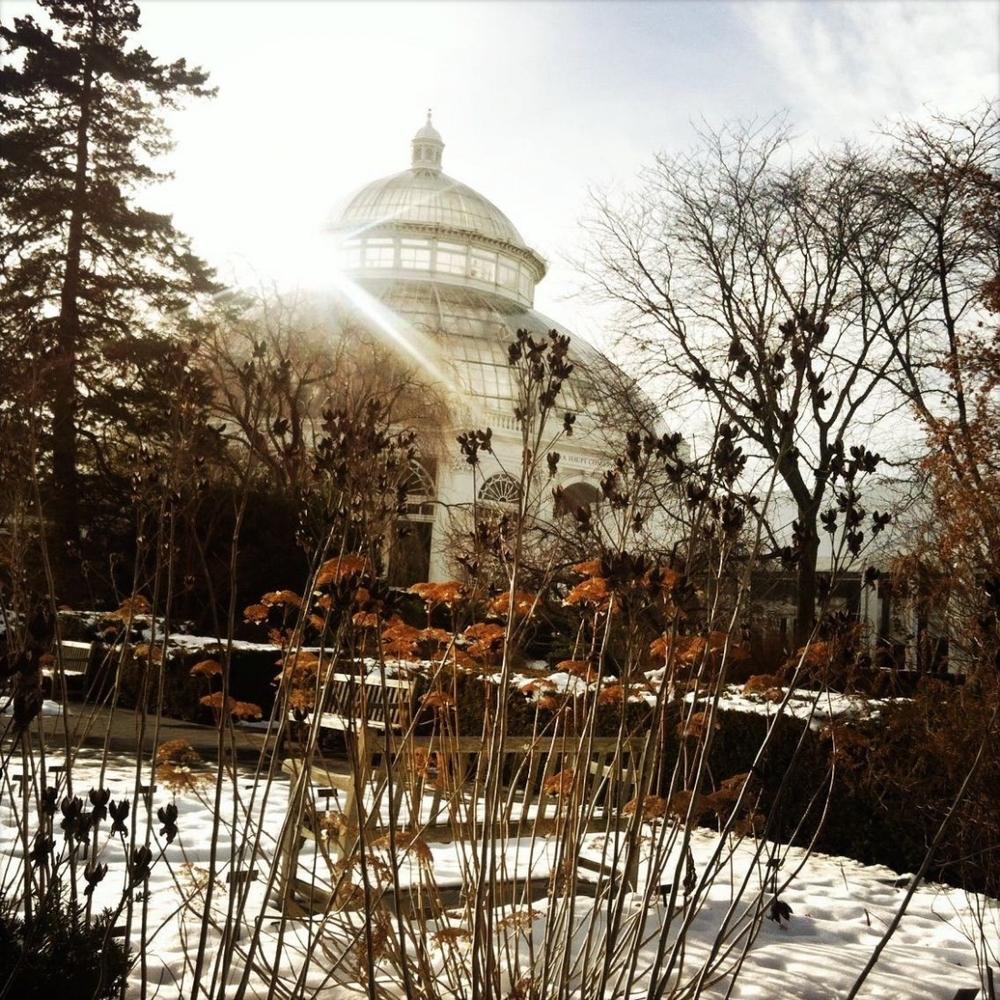 Botanischer Garten Bronx