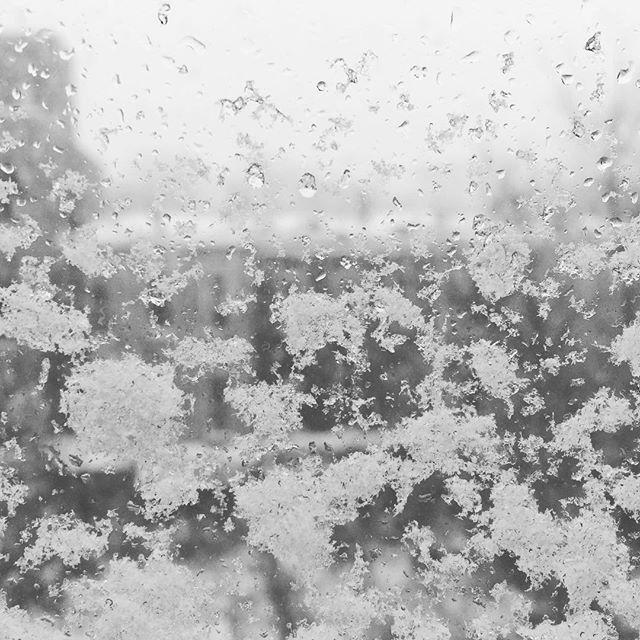 #storm is over #snowday #bitterkalt #schön #winterdays #eis #unterwegs? #hmmm #dinyt #deineindividuellenewyorktour #window #staywarm #bushwick #brooklyn #view #entdecken
