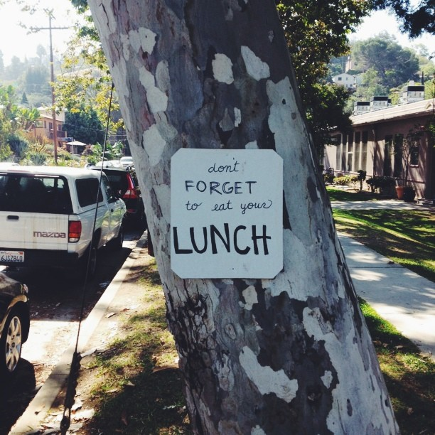 unequal-design :     Yr not my mom, tree.     best advice of the day. from a tree?