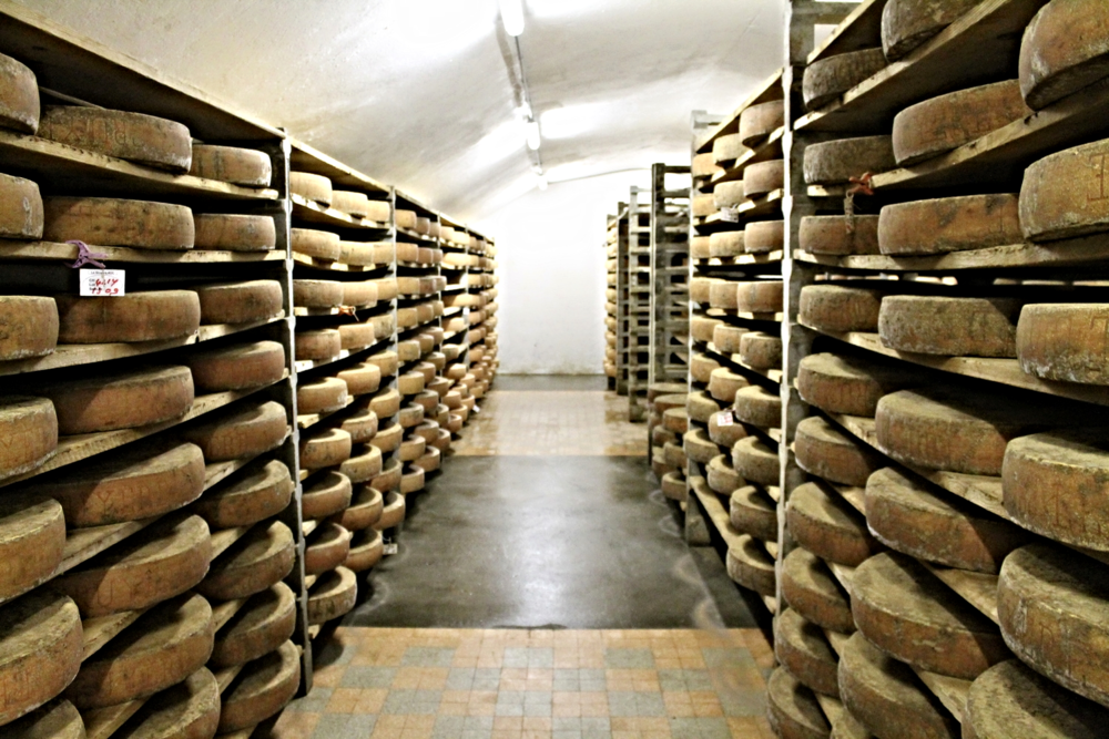 Wheels of Gruyere aging in Villeneuve, Switzerland.
