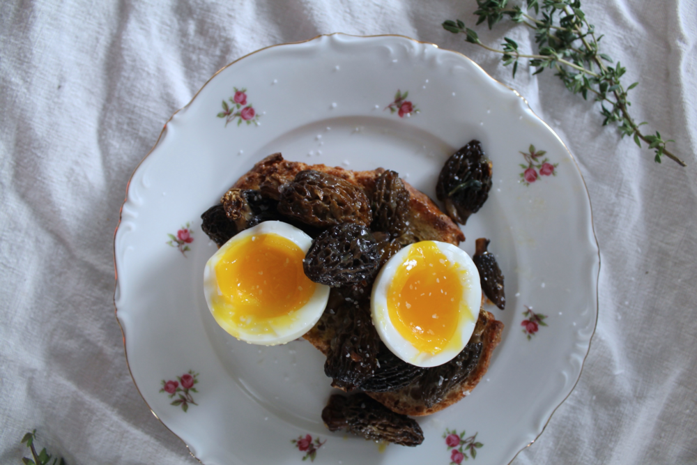 Morels On Toast With A Soft Boiled Egg | www.hungryinlove.com
