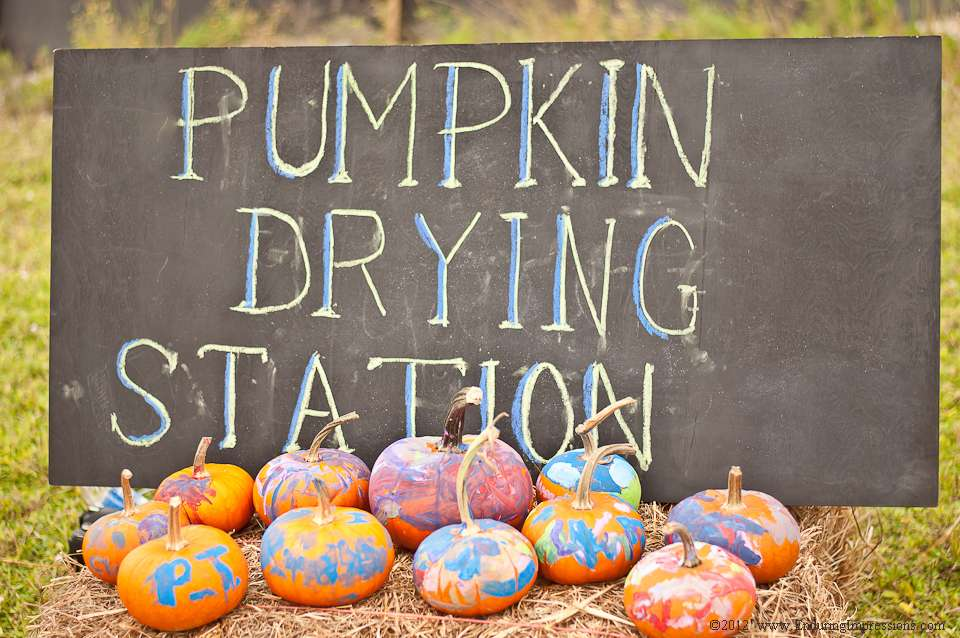 pumpkin drying station.jpg