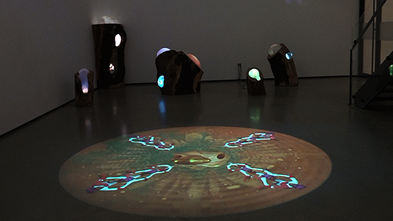 Can we hear the healers call?, 2016 Floor projection Video circle 7:30min, looped Satellite with video-projector, media-player Variable size