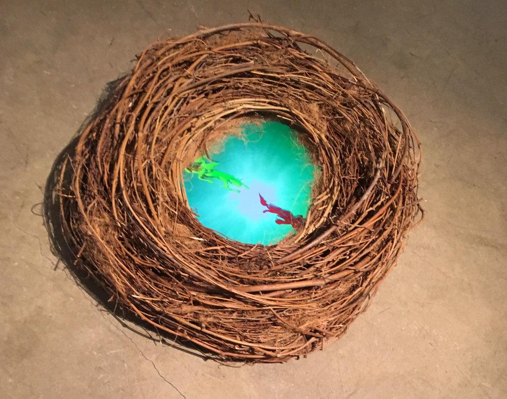 Nests single.jpg