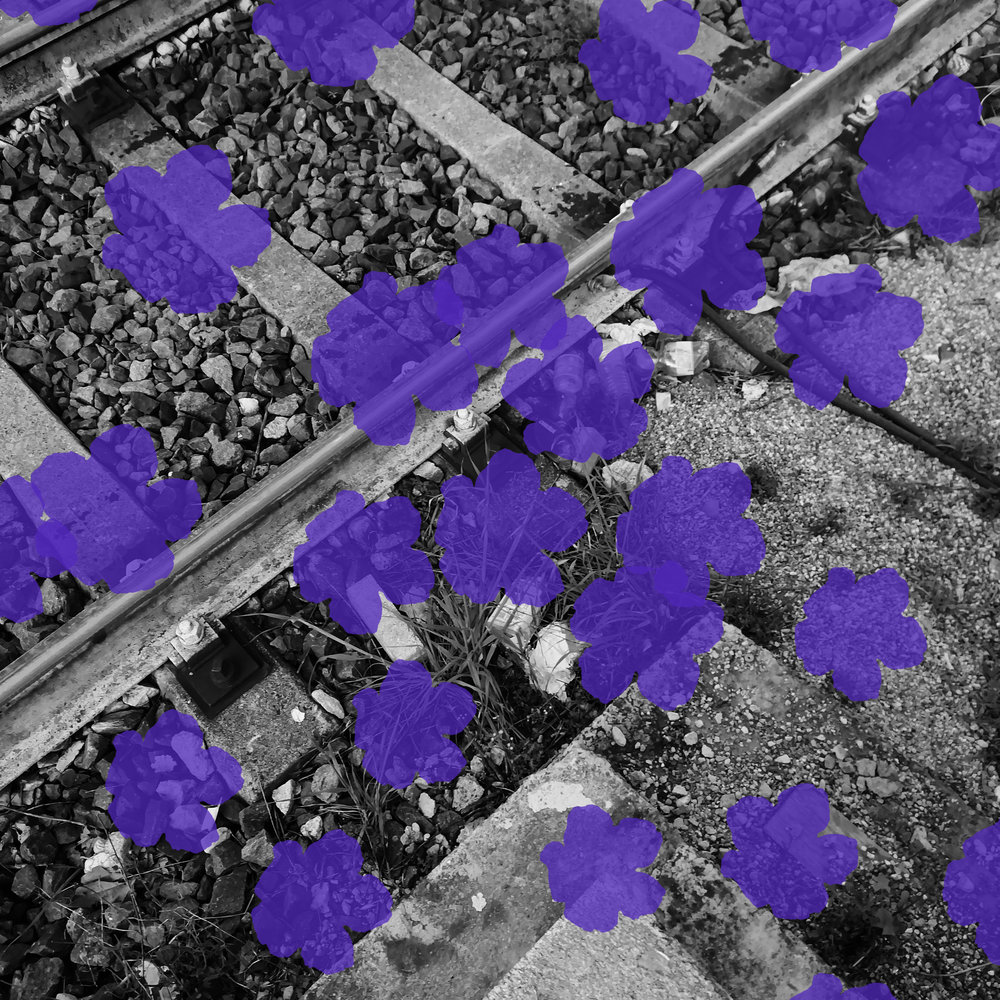 Andrea- rebel seeds of love.jpg