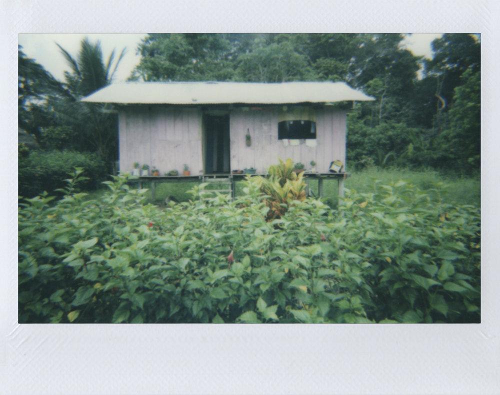 Polaroid 32.jpg