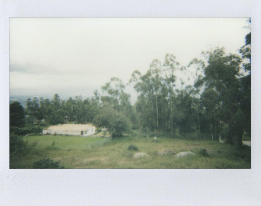 Polaroid 34.jpg