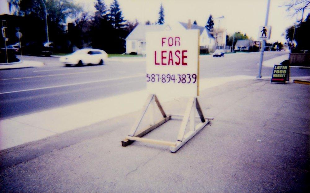 Polaroid Lightroom Edited Selects-53-Edited.jpg