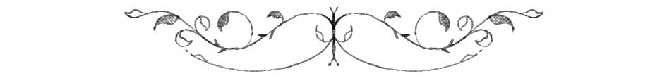 swirls (blog 236 - footer) copy.jpg
