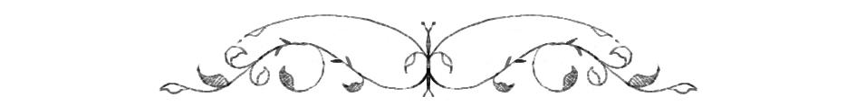 swirls (blog 236 - header) copy.jpg