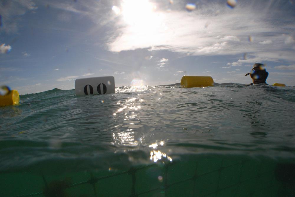 Swimmer's Floats