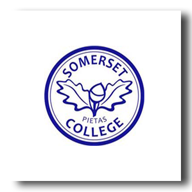somerset college rugby