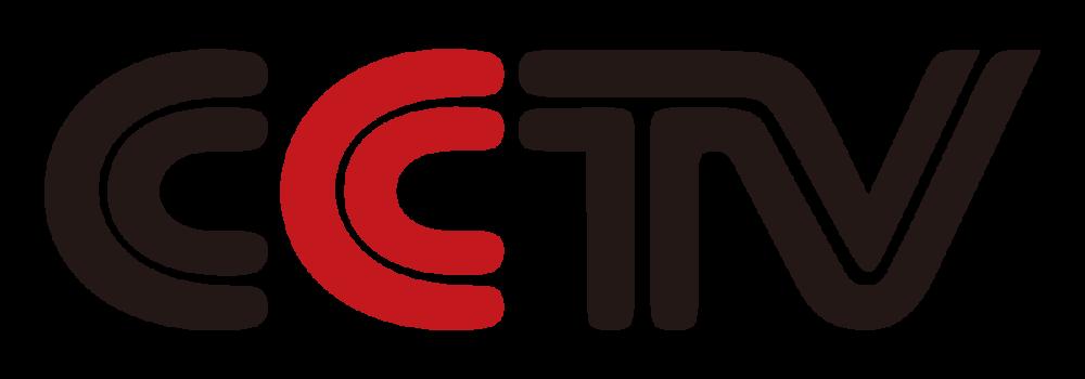 cctv1.png