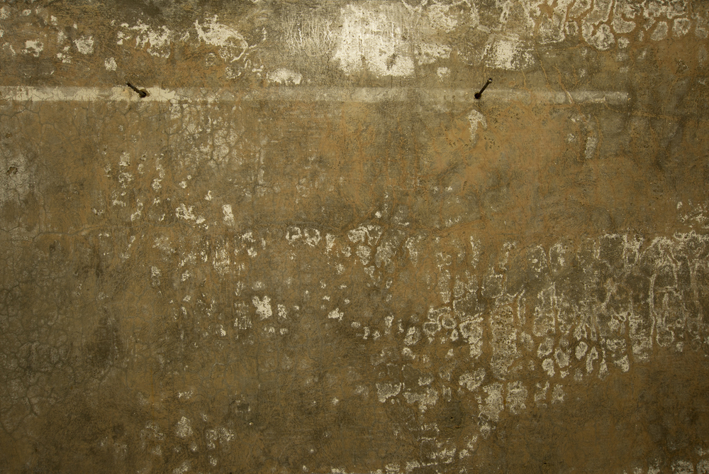 Bunker Palimpsest No. 1