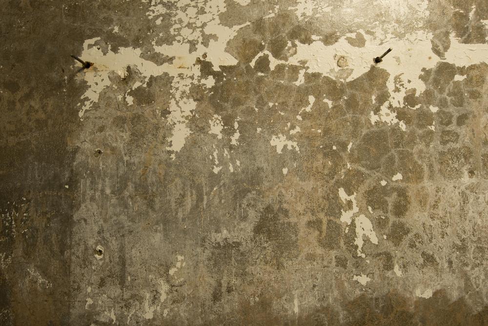 Bunker Palimpsest No. 5