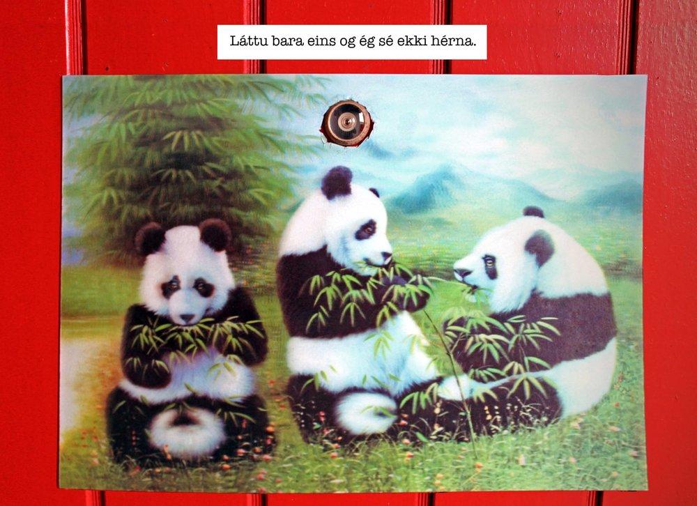 pandapanda3.jpg