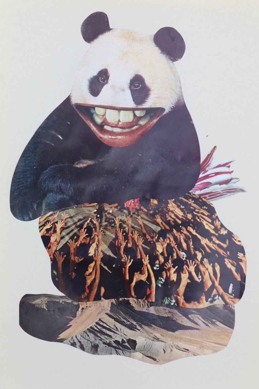 Pandamonium, 2017