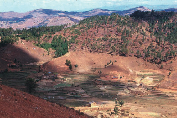 Mature lavaka with terracing and homestead buildings. Photo: Jon Unruh