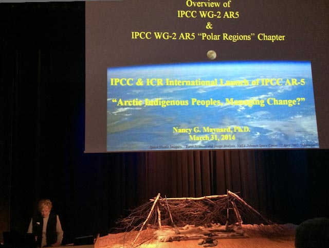 Dr. Nancy Maynard, Lead Author of the Polar Regions Chapter, speaks at the IPCC & International Center for Reindeer Husbandry (ICR) Launch Event of IPCC WG2 AR-5 in Kautokeino. Photo: Alizé Carrère