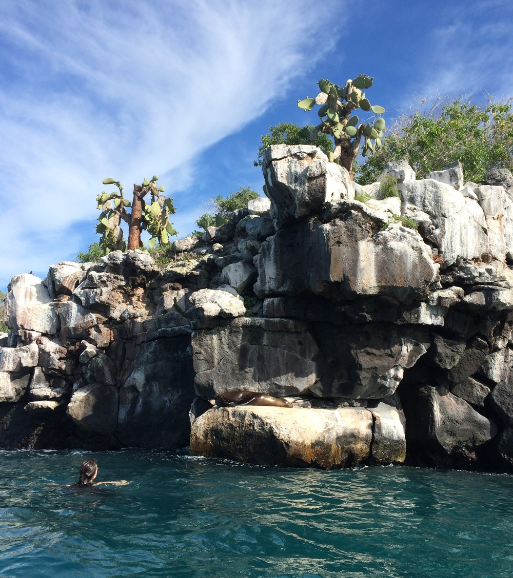 Snorkeling around the edges of the rocky islands offers up-close and personal interactions with sea lions, blue-footed boobies, and small schools of fish. (Photograph by Alizé Carrère)