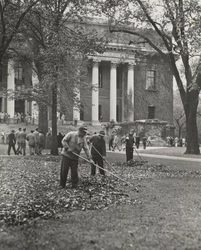 Raking Harvard Yard, 1946