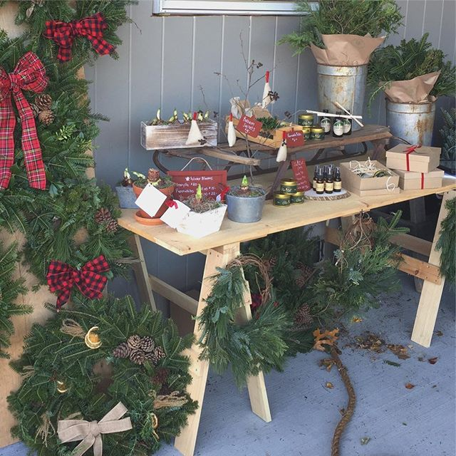 Well, we are just about out of trees and will plan to set up for the last day at the @canaldistrict farmers market IN the @whiteroomworcester on Saturday from 9-12. We have a few cute little trees, wreaths, decorating greens, candles and more. Thanks to all who supported us this year despite construction and a last minute change in location. We are so thankful you sought us out. ❤️🌲