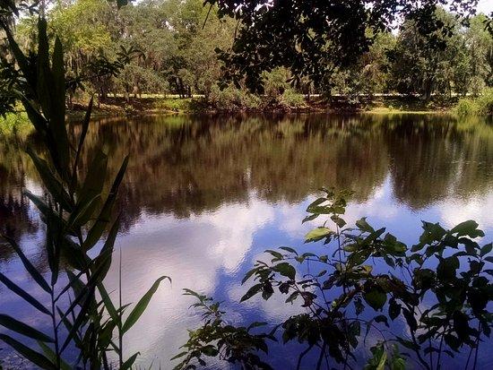 deep-spring-pond-35-deep.jpg