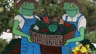 Frog-Song-Organics-2.jpg