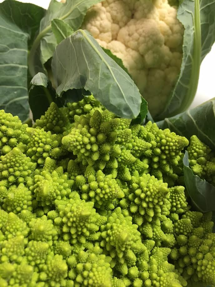 fg+romanesco+and+white+cauli.jpg