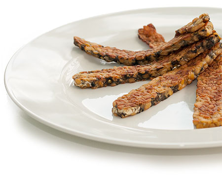 tempeh-on-plate-2-86e46a32efd0135c3bedf792232bd9ef.jpg