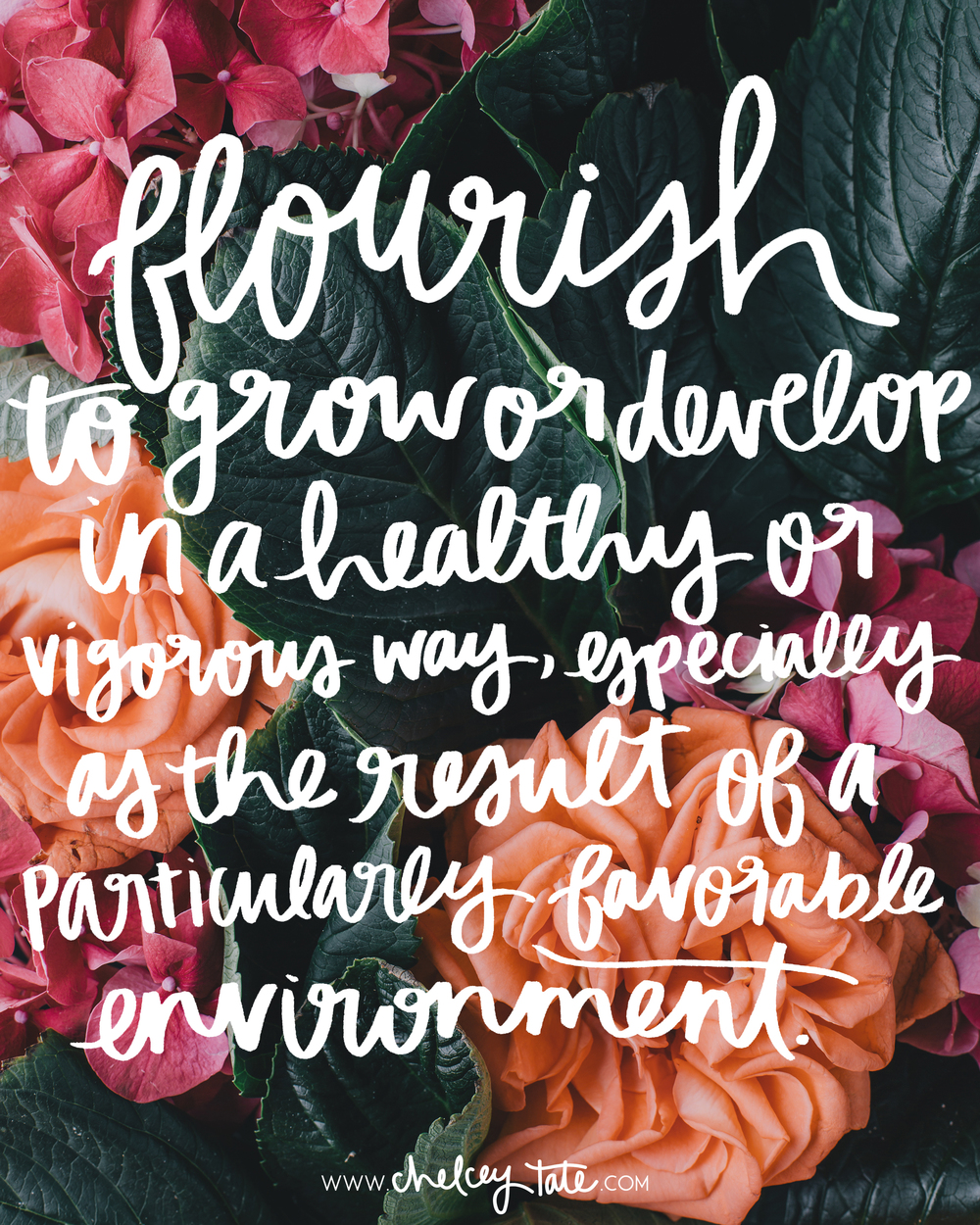 Definition of Flourish / Lettering by www.chelceytate.com