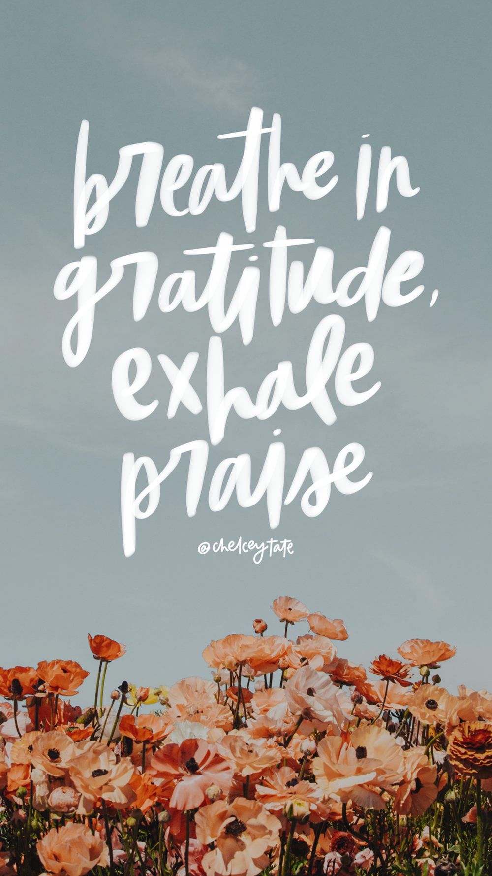 Breath In Gratitude, Exhale Praise Daily Love Note by Chelcey Tate via chelceytate.com