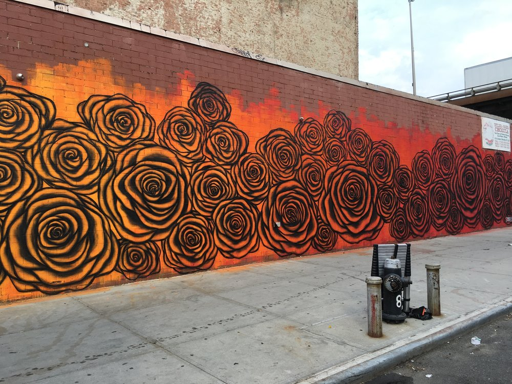 Sunset Park Roses