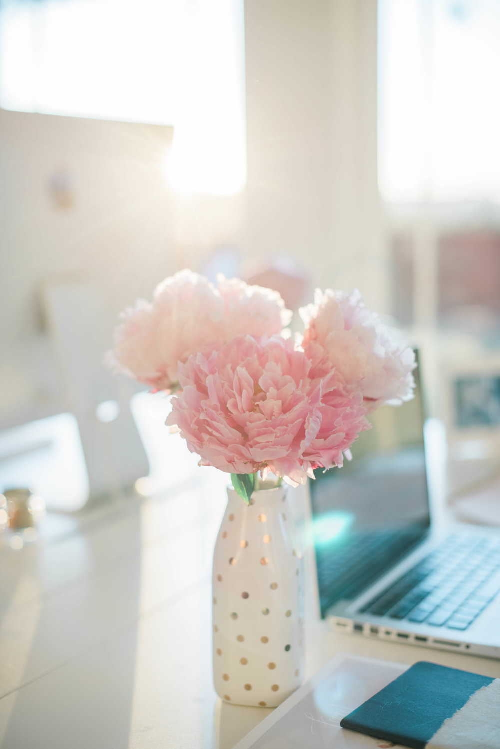 Pink peonies and sunset = My Heaven