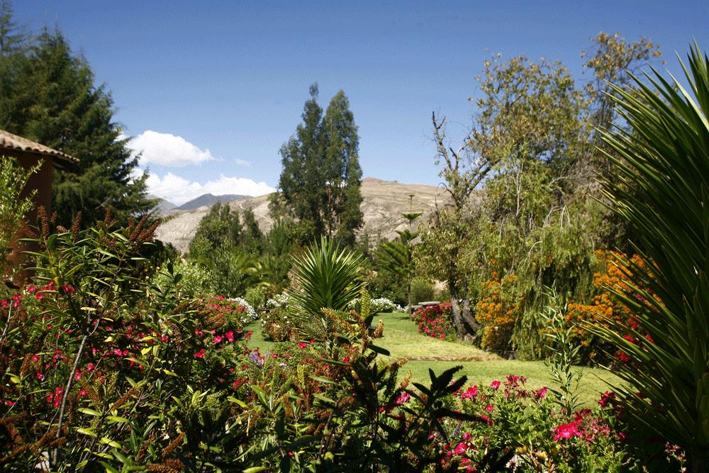 Sol y Luna Gardens